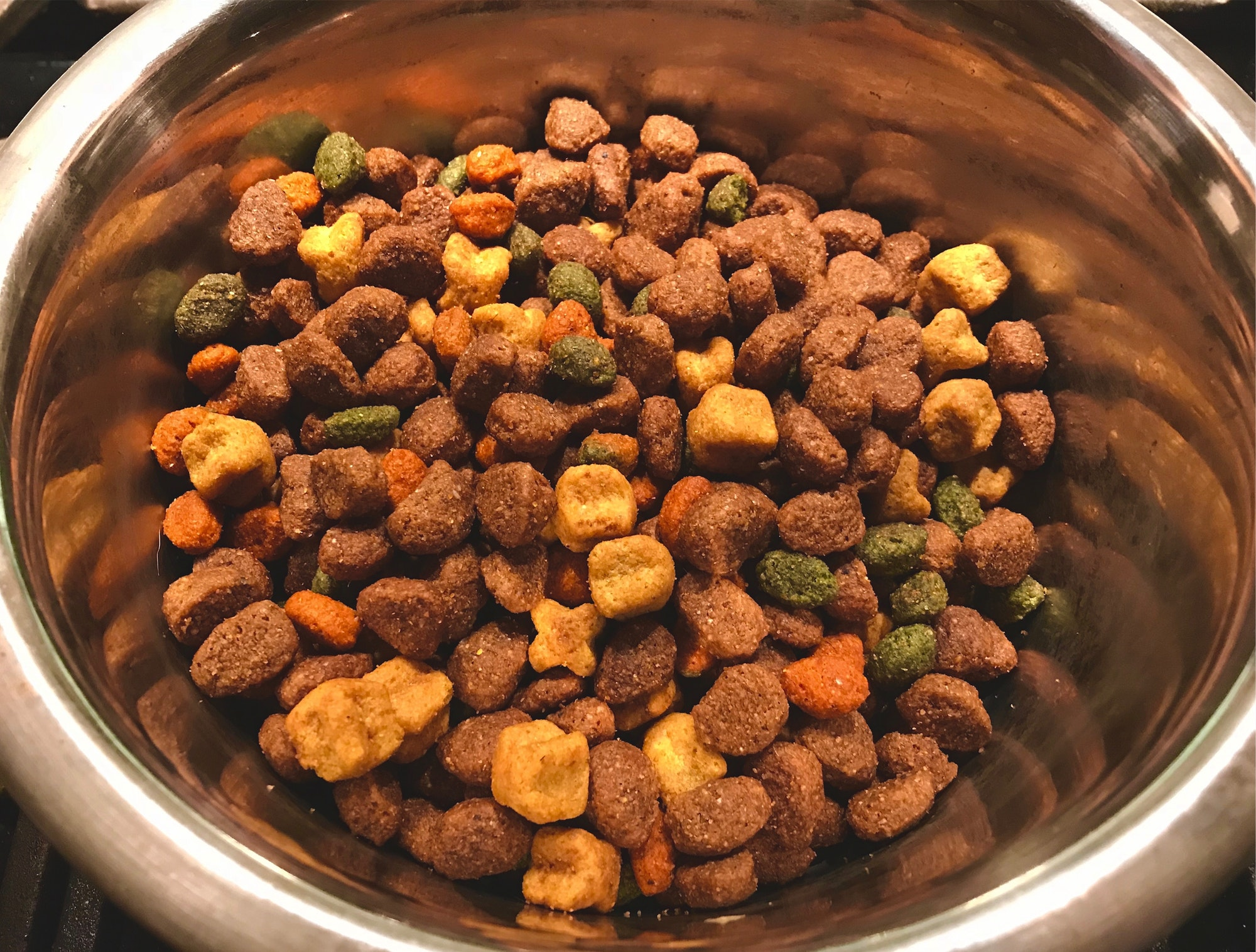Dog food dry kibble in a stainless steel dog food bowl